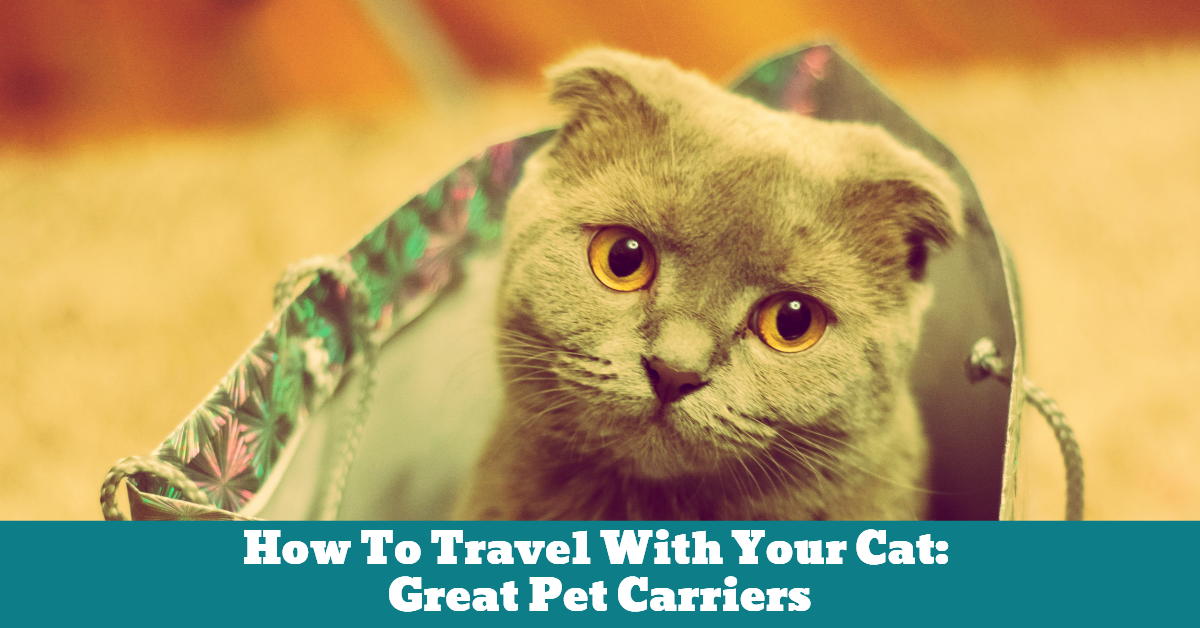 Pet_Cat_Travel_Carrier