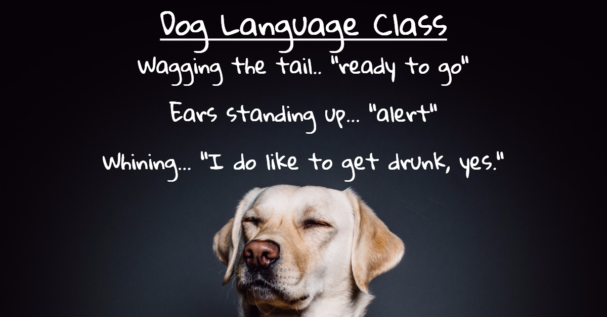 Pet_Dog_Body_Language_Learning