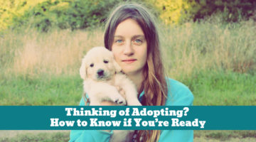 Thinking of Adopting? How to Know if You're Ready
