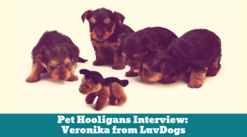 Pet Hooligans Interview: Veronika from LuvDogs