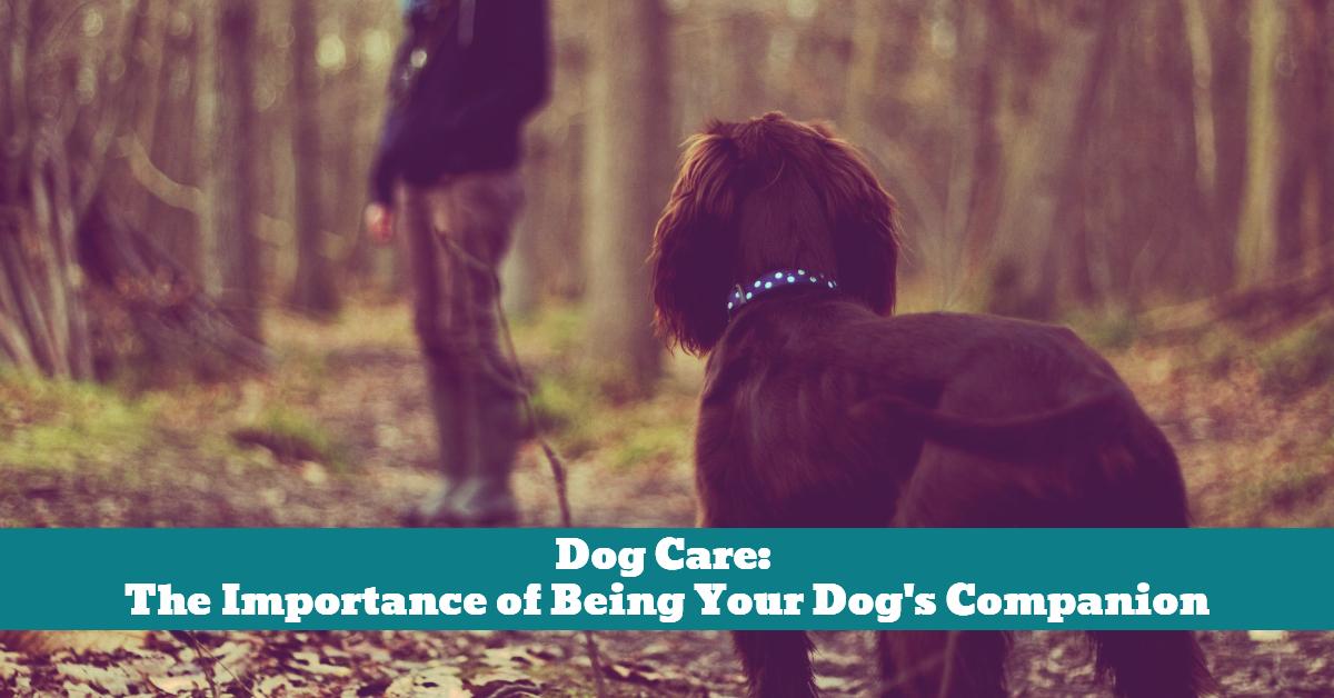 Dog_Personal_Companion