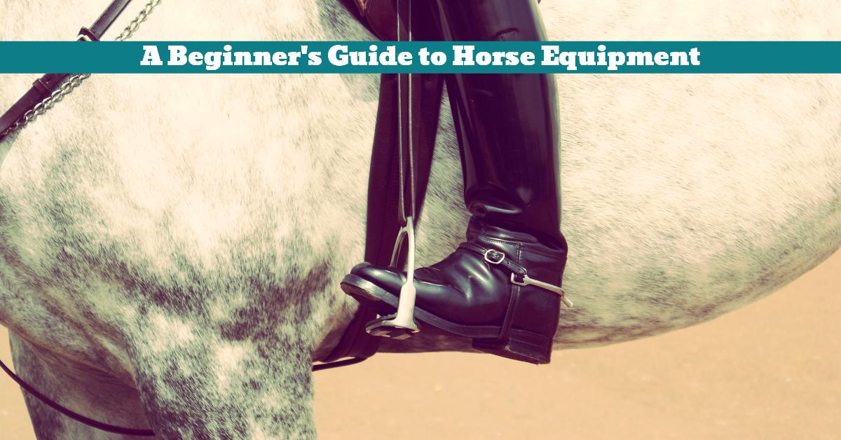 Horse_Equipment_Tackle_Beginner_Guide