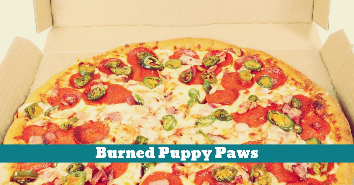 Dog_Paws_Pizza_Cheese_SarahBlakemore