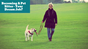Becoming A Pet Sitter – Your Dream Job?