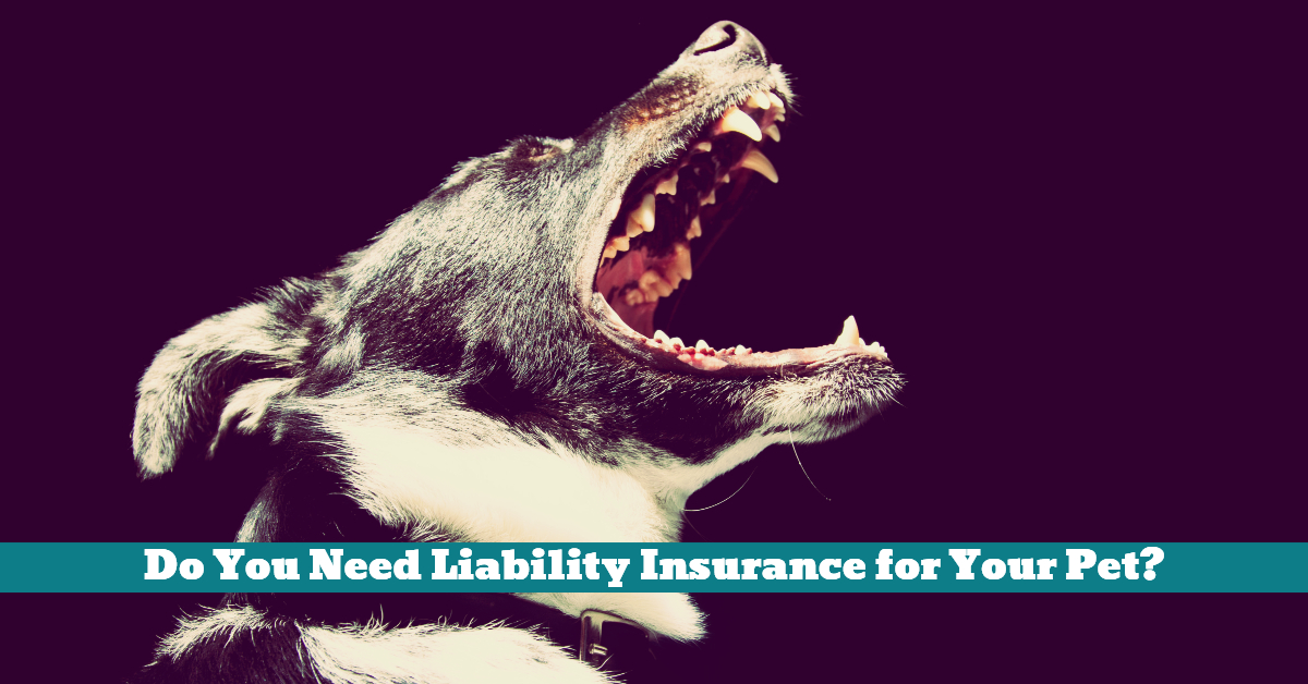 Dog_Pet_Insurance_Liability_Loss_Damage_Injury