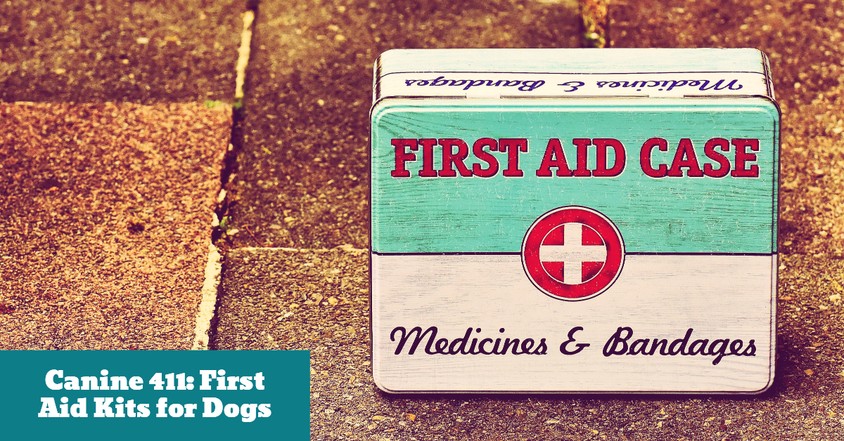Dog_Canine_411_First_Aid_Kit