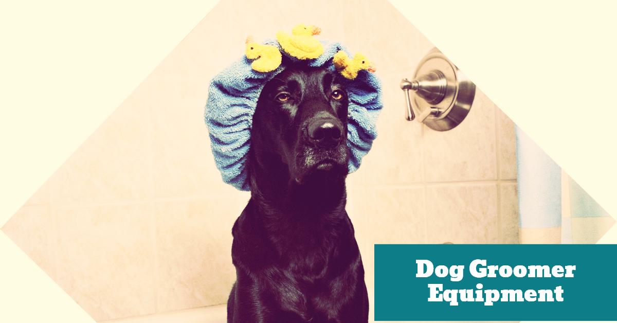 Dog_Groomer_Grooming_Bath_Tub_Hygiene_Dryer_Brushes_Combs_Clippers_Shears_Scissors