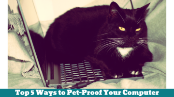 Top 5 Ways to Pet-Proof Your Computer