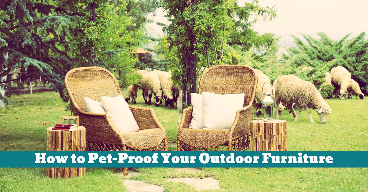 Pet_Proof_Outdoor_Furniture