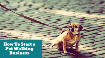 How To Start a Pet Walking Business