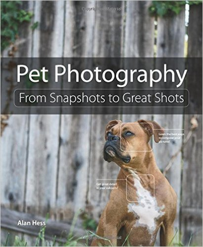 pet_photography
