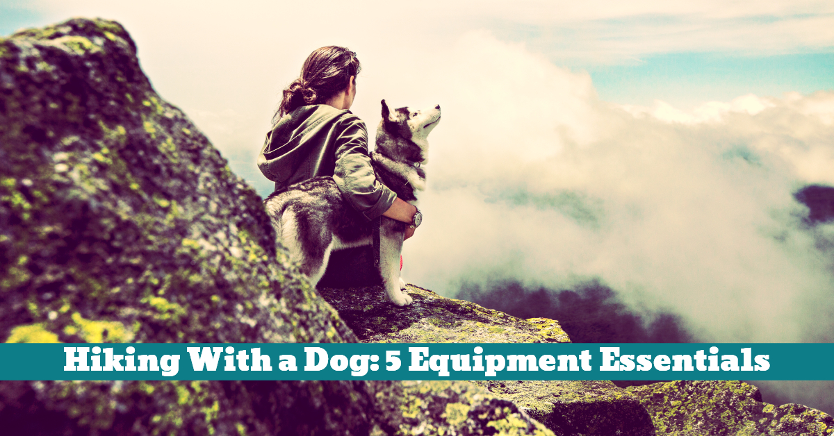 Dog_Hiking_Backpack_Supplies_First_Aid_Travel