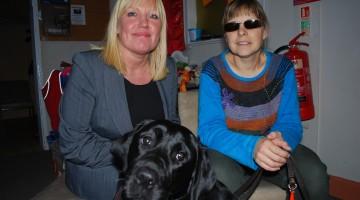 Support Dogs: Seizure Alert Dogs