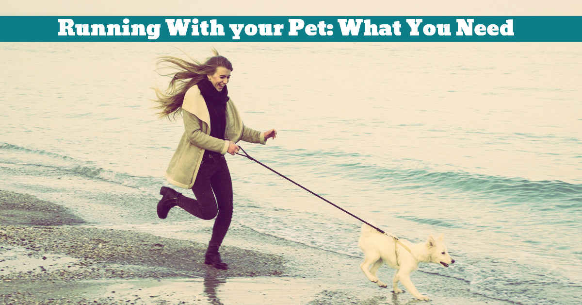 Pet_Dog_Exercise_Partner_Running_Jogging_Companionship