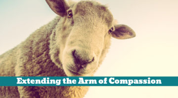 Extending the Arm of Compassion