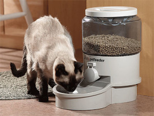 autopetfeeder-small-detail