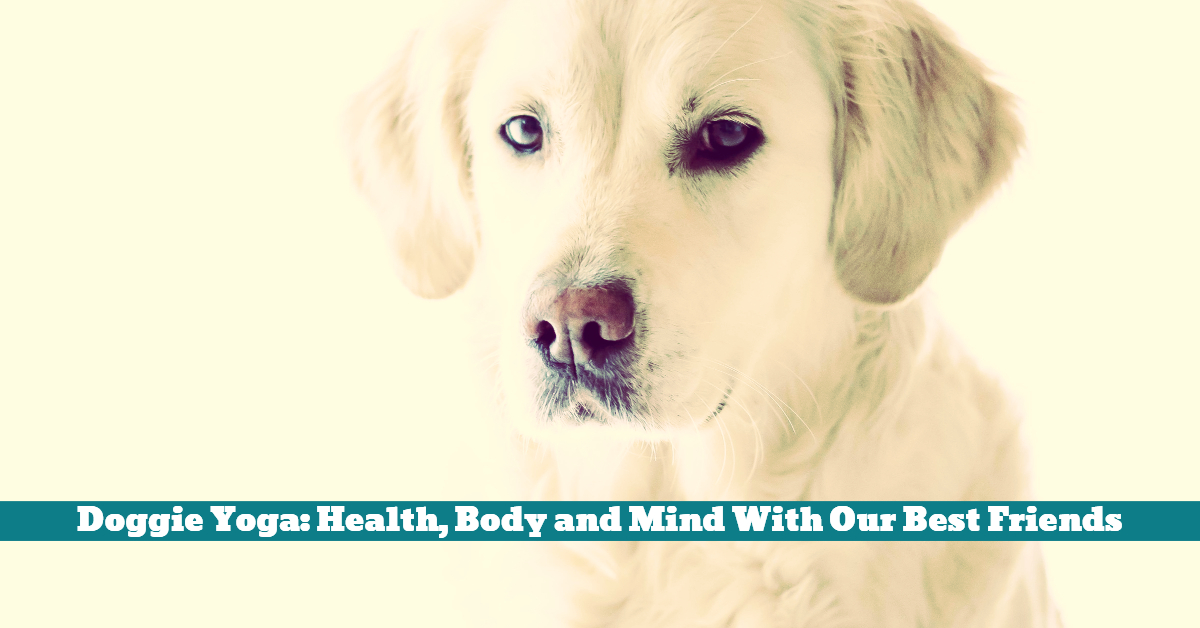 Dog_Yoga_Health