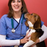 Different College Majors That Allow You to Work With Animals