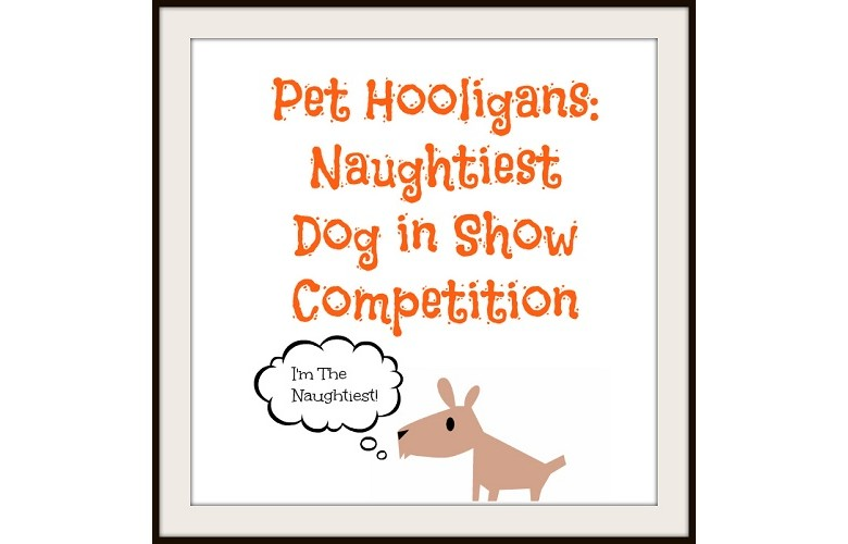 Pet Hooligans 'Naughtiest Dog in Show' Competition