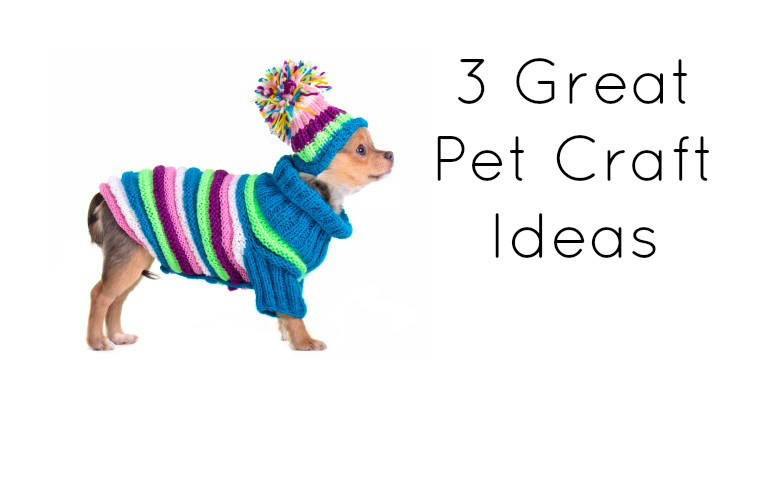 3 Great Pet Craft Ideas