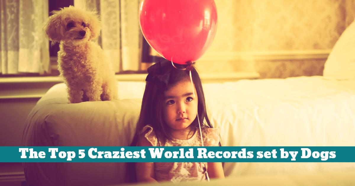 Dog_World_Records