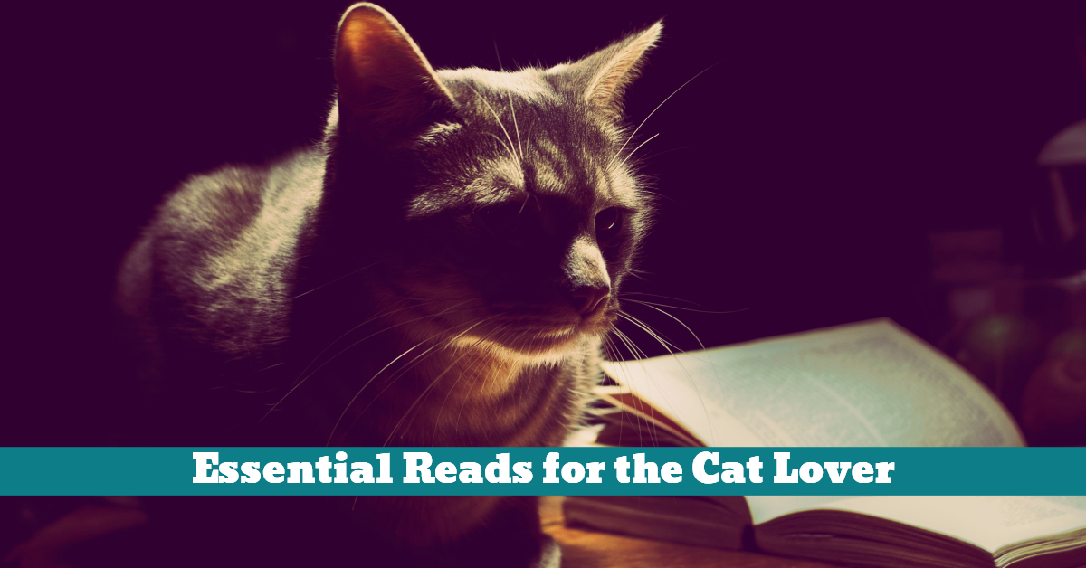 Cats_Study_Reading_Veterinary_Learning_Psychology