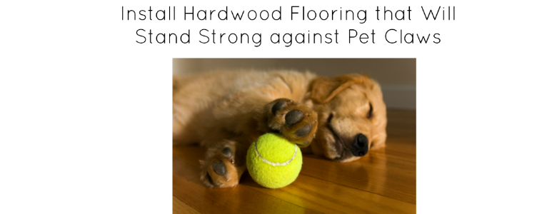 Install hardwood flooring that will stand strong against for Hardwood floors dog nails