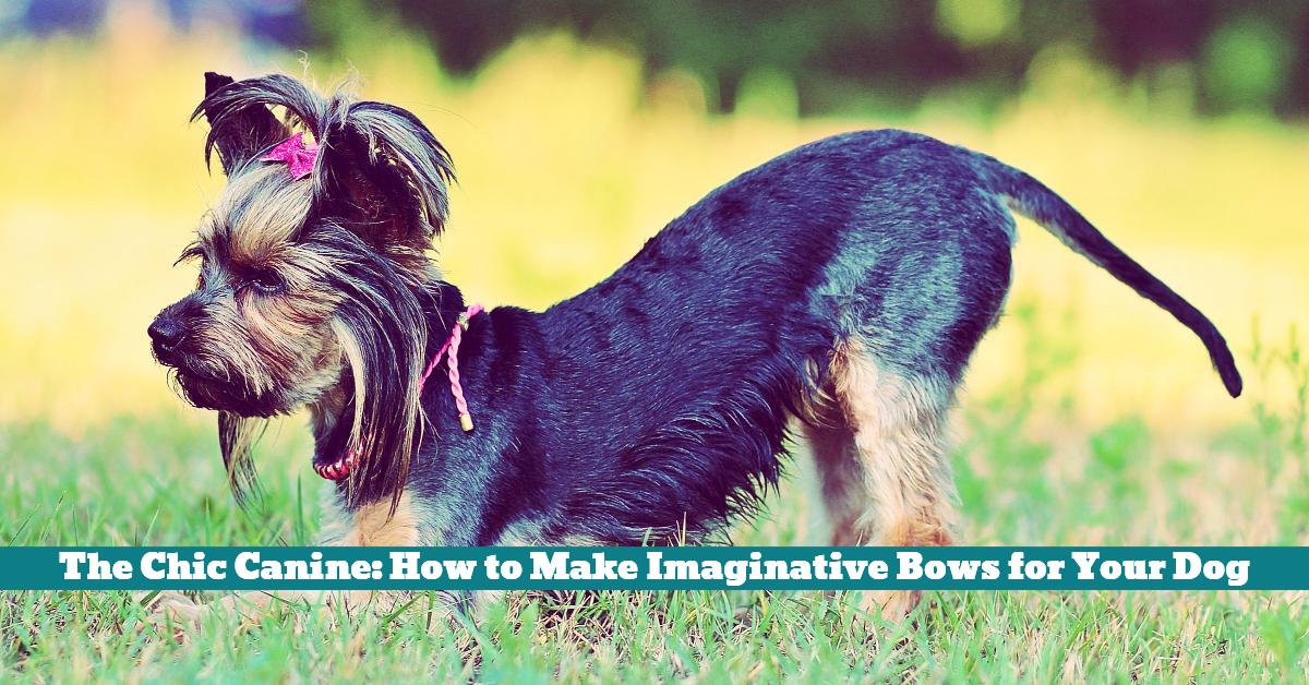 Dog_Bow_Tie_Ribbon_Chic