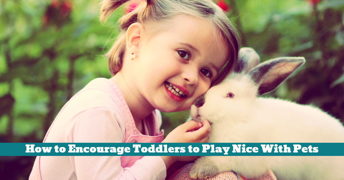 Pets_Toddlers_Kids_Children_Play_Safe_Gentle