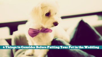 4 Things to Consider Before Putting Your Pet in the Wedding