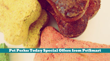 Pet Perks: Today Special Offers from PetSmart
