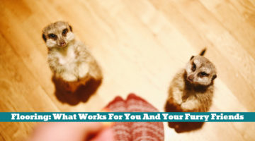 Flooring: What Works For You And Your Furry Friends