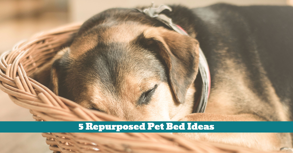 Pet_Dog_Bed_Sleeping_Quarters_House