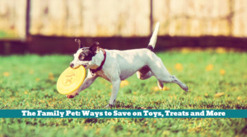 The Family Pet: Ways to Save on Toys, Treats and More