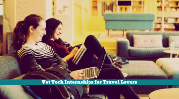 Vet Tech Internships for Travel Lovers