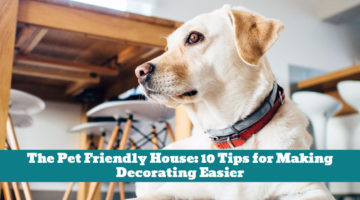 The Pet Friendly House: 10 Tips for Making Decorating Easier