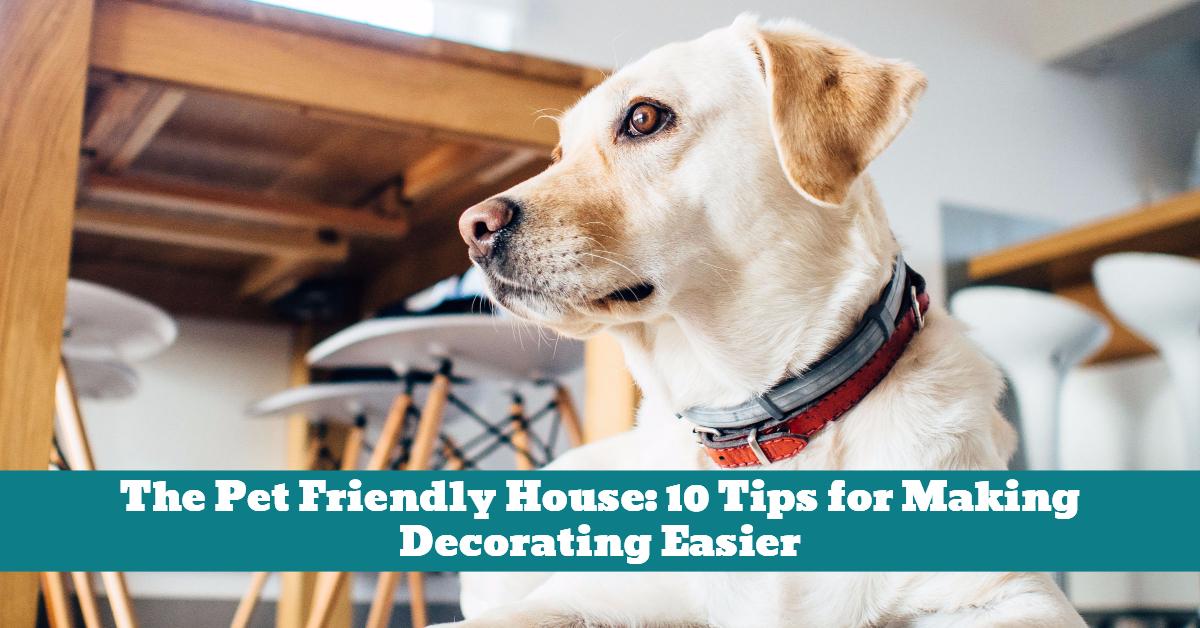 Dog_Pet_House_Decorating_Safety
