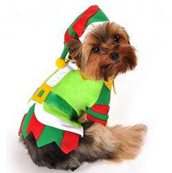 elf_costume_dog