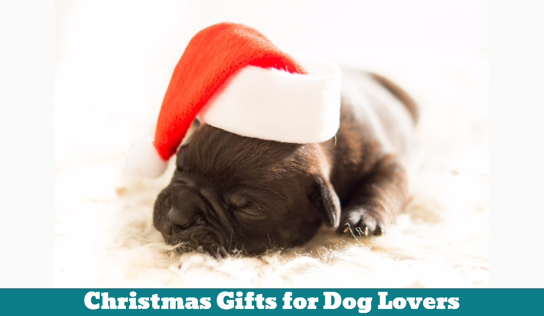 Christmas Gifts For Dog Lovers - Pet Hooligans