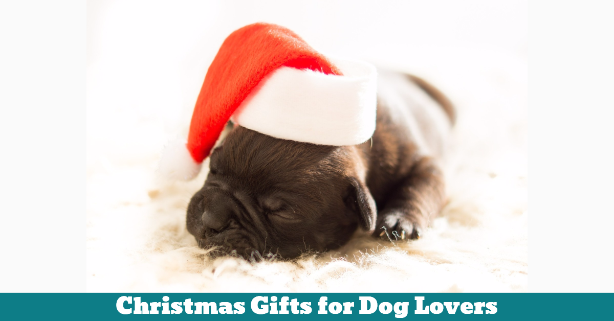 Christmas Gifts For Dog Lovers | Pet Hooligans