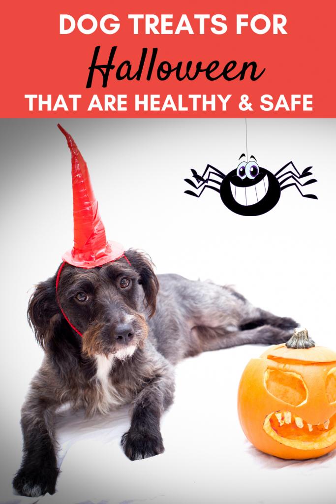 dog treats for Halloween
